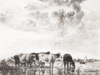 cows-river-sm