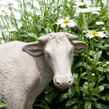 cow garden statue