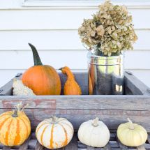 farmhouse fall display