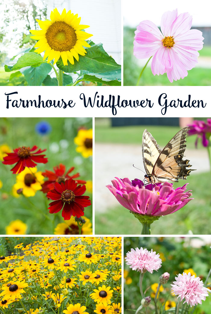 A few favorites from our Farmhouse Wildflower Garden