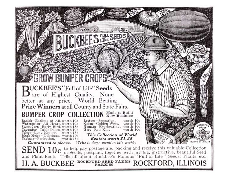 Buckbee's seeds vintage graphic
